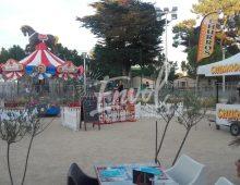 Location carrousel pas cher