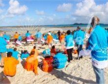 Team building cohésion équipe plage Envol Vendée
