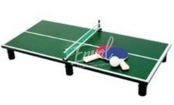 jeu en bois mini ping pong.jpg