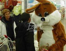 Mascotte lapin