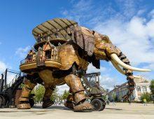 Nantes-elephant-jeu-piste